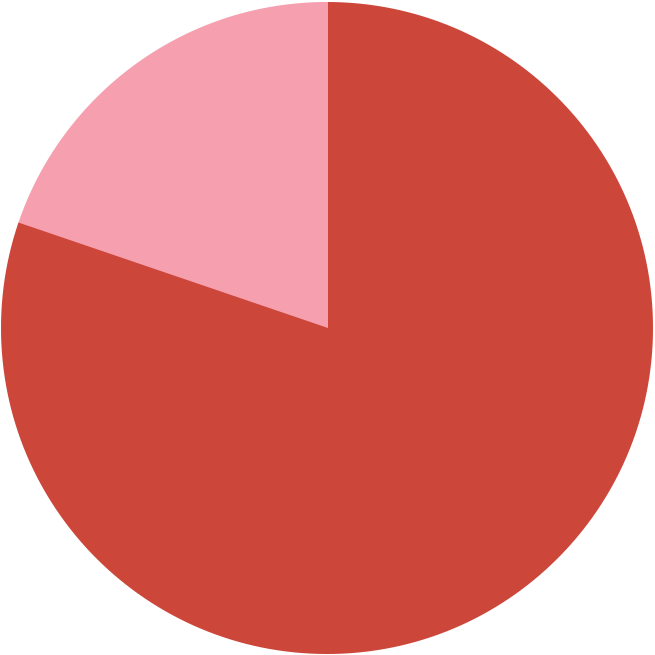 Pie chart with 80% in red and 20% in pink